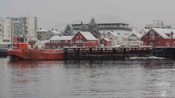 unterwegs im Trollfjord