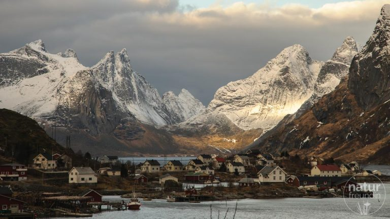 Ein Blick auf Reine, Lofoten