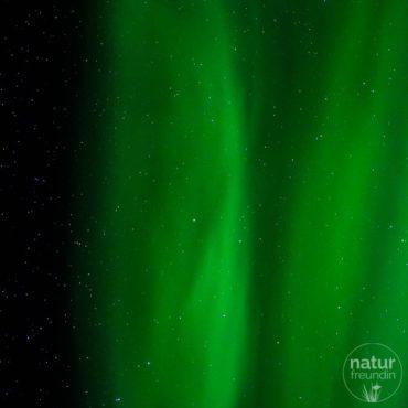 Lofoten – coole Motive und meine ersten Nordlichter
