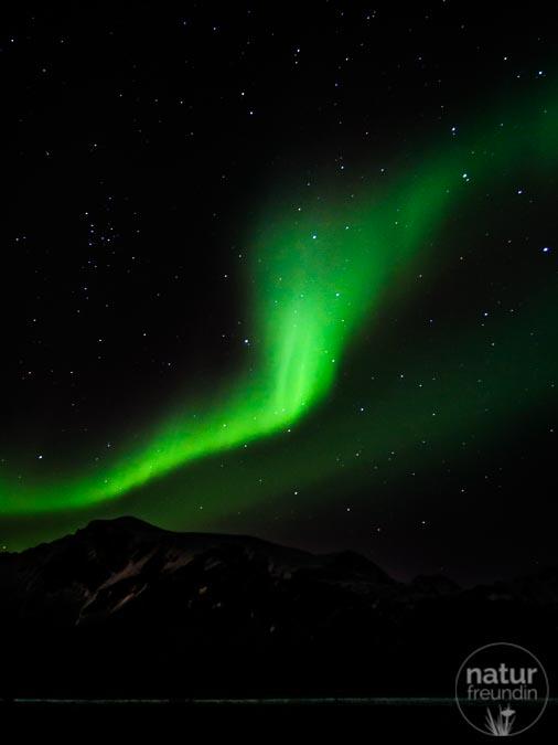 Nordlichter auf den Lofoten