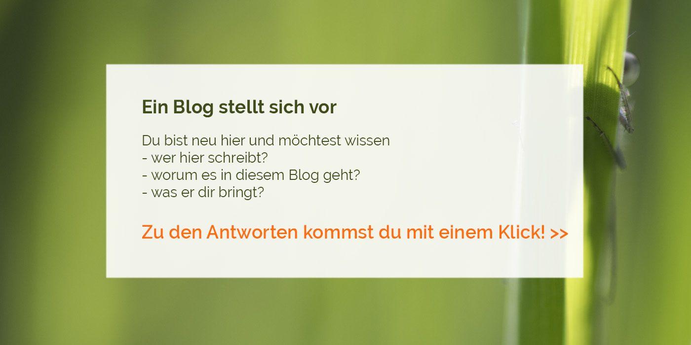 Ein Blog stellt sich vor