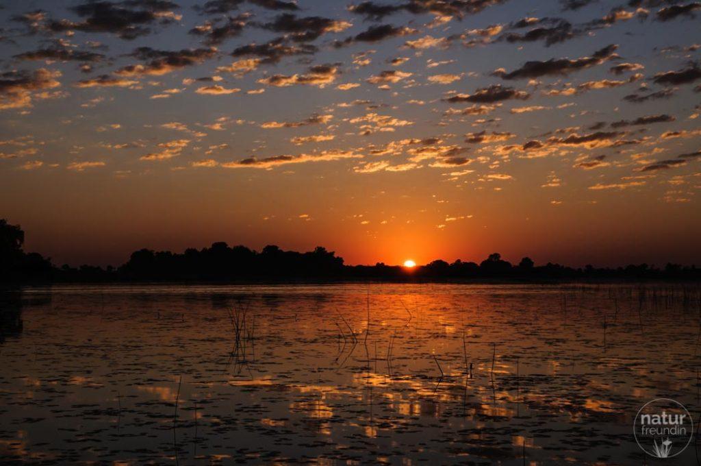Sonnenuntergang Okavangodelta
