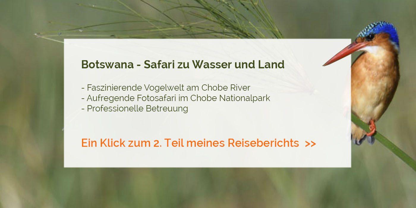 Botswana - Safari zu Wasser und Land im Chobe Nationalpark