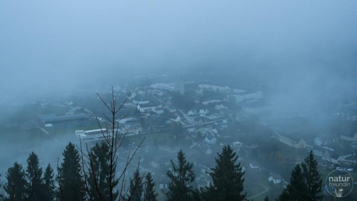 Admont im Nebel