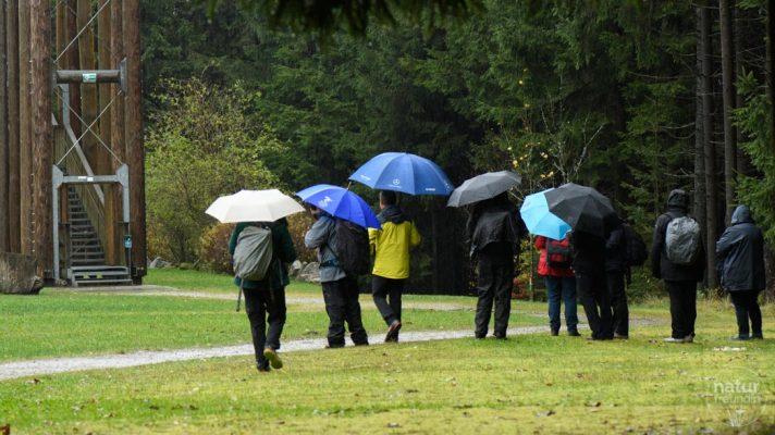 FotografInnen im Regen