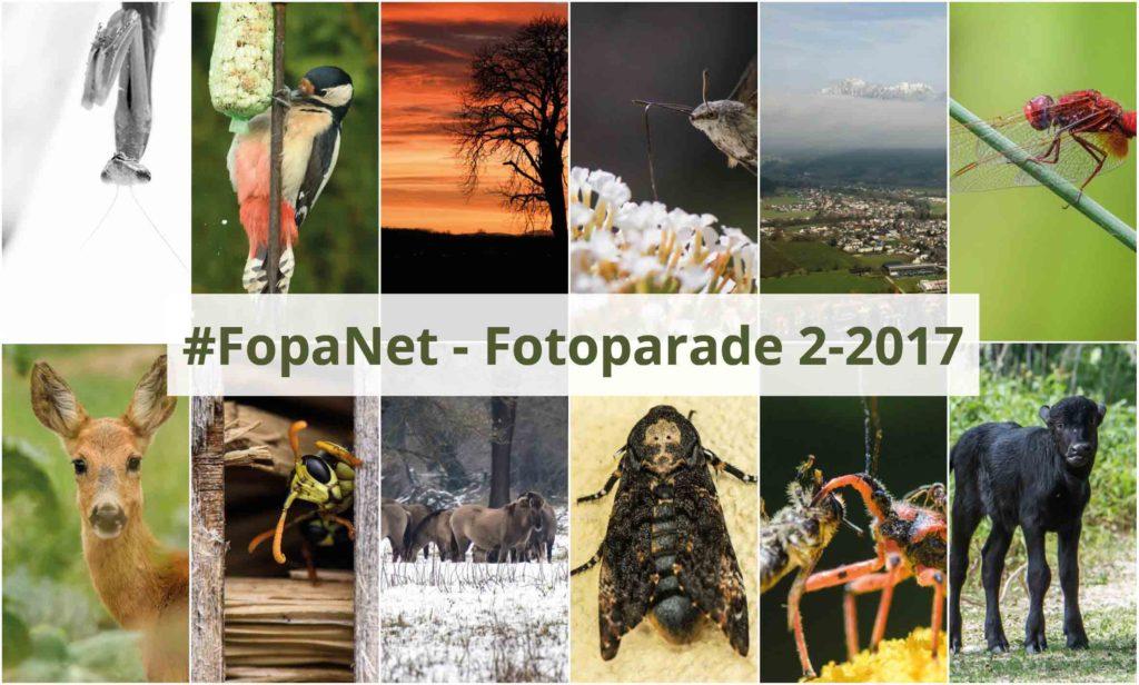 FopaNet Cover