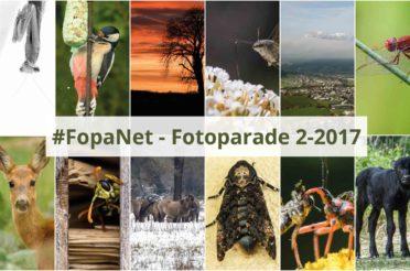 #FopaNet – meine schönsten Bilder im 2. Halbjahr 2017