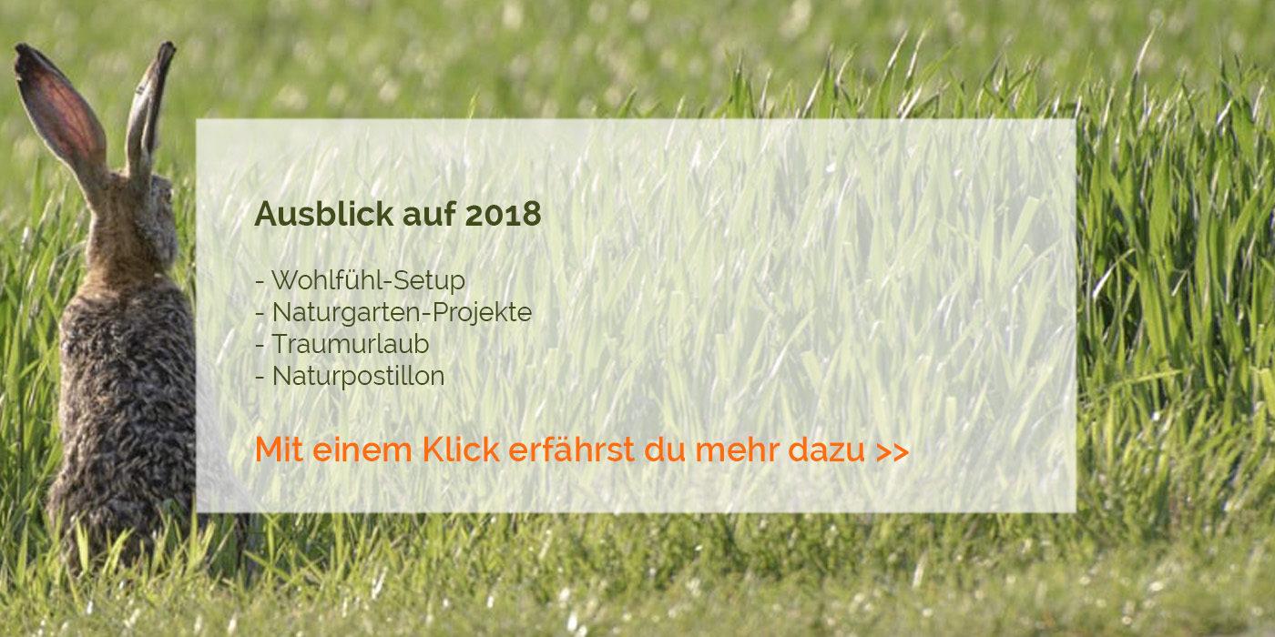 Ausblick 2018