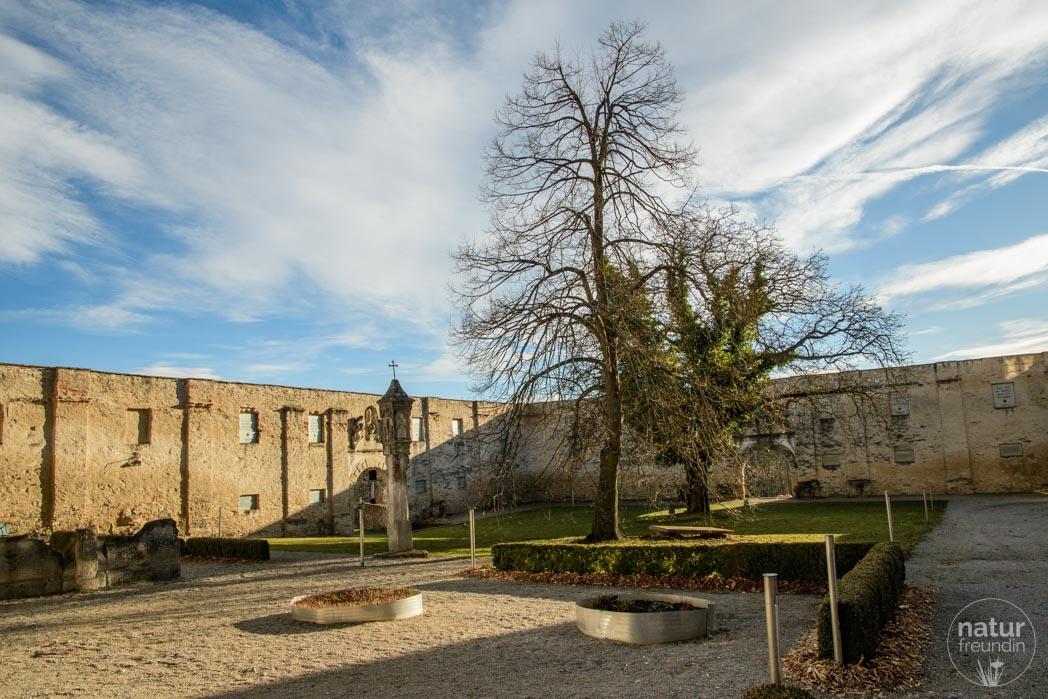 Philosophengarten