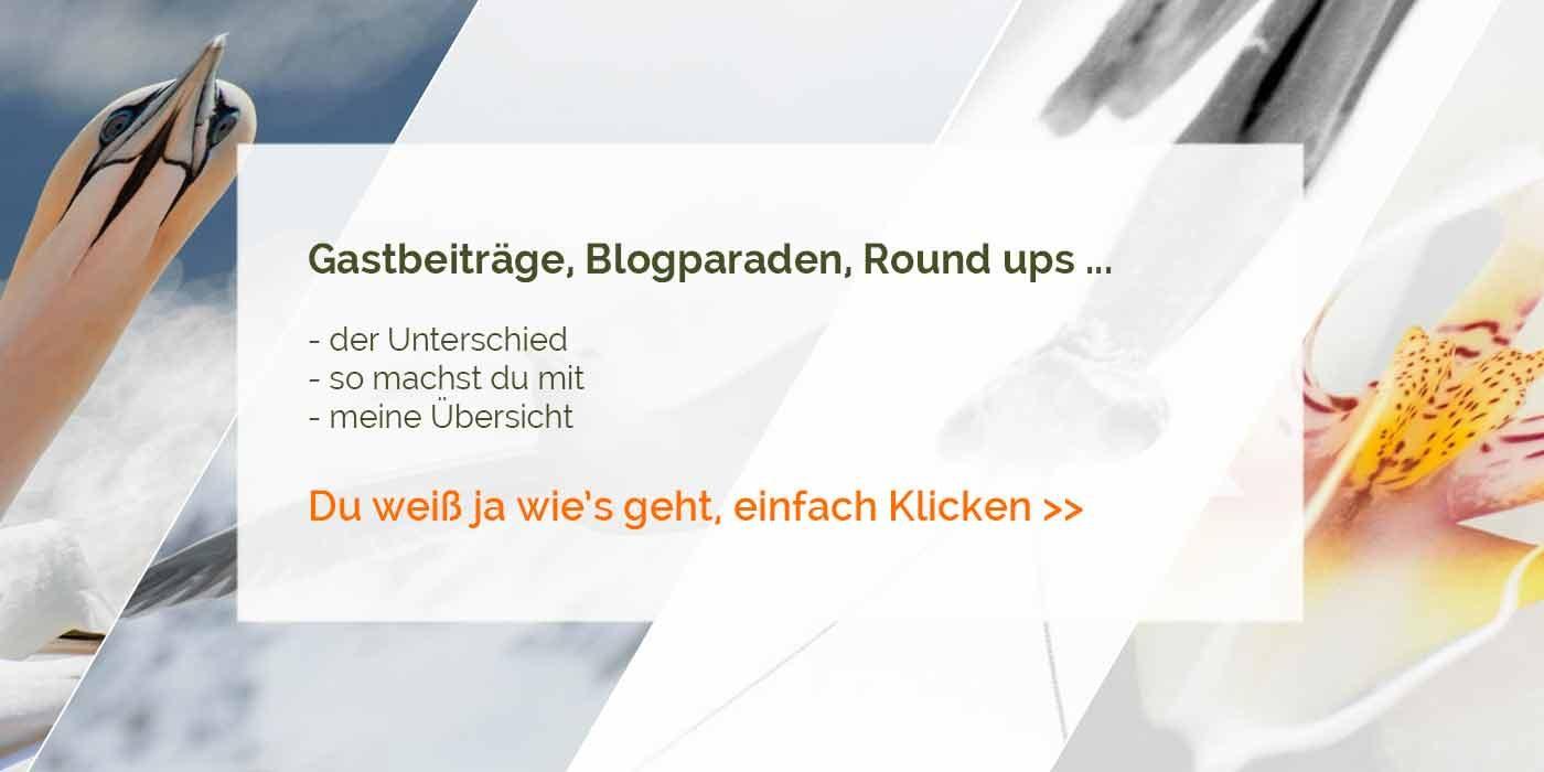 Gastbeiträge, Blogparaden, Round ups ...