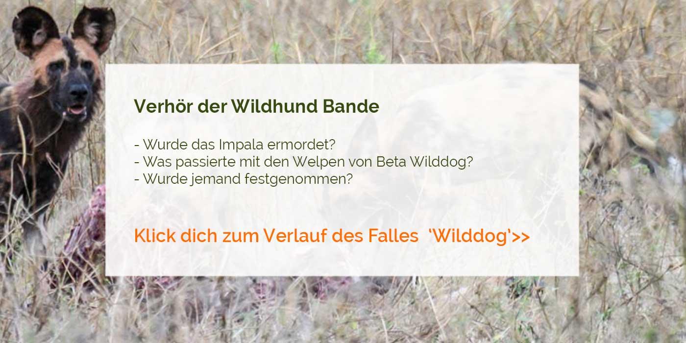 Verhör der Wildhund Bande