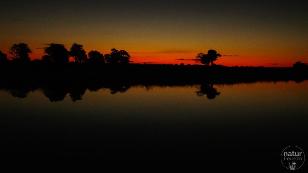 nachts im Mudumu Nationalpark