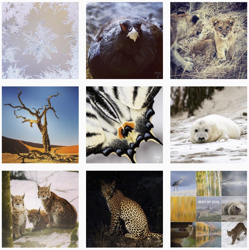 Instagram naturfreundin
