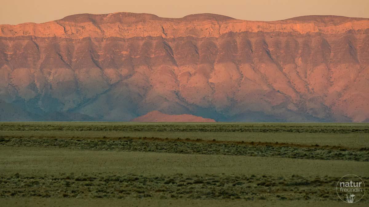 Elim Dune, Naukluft Nationalpark