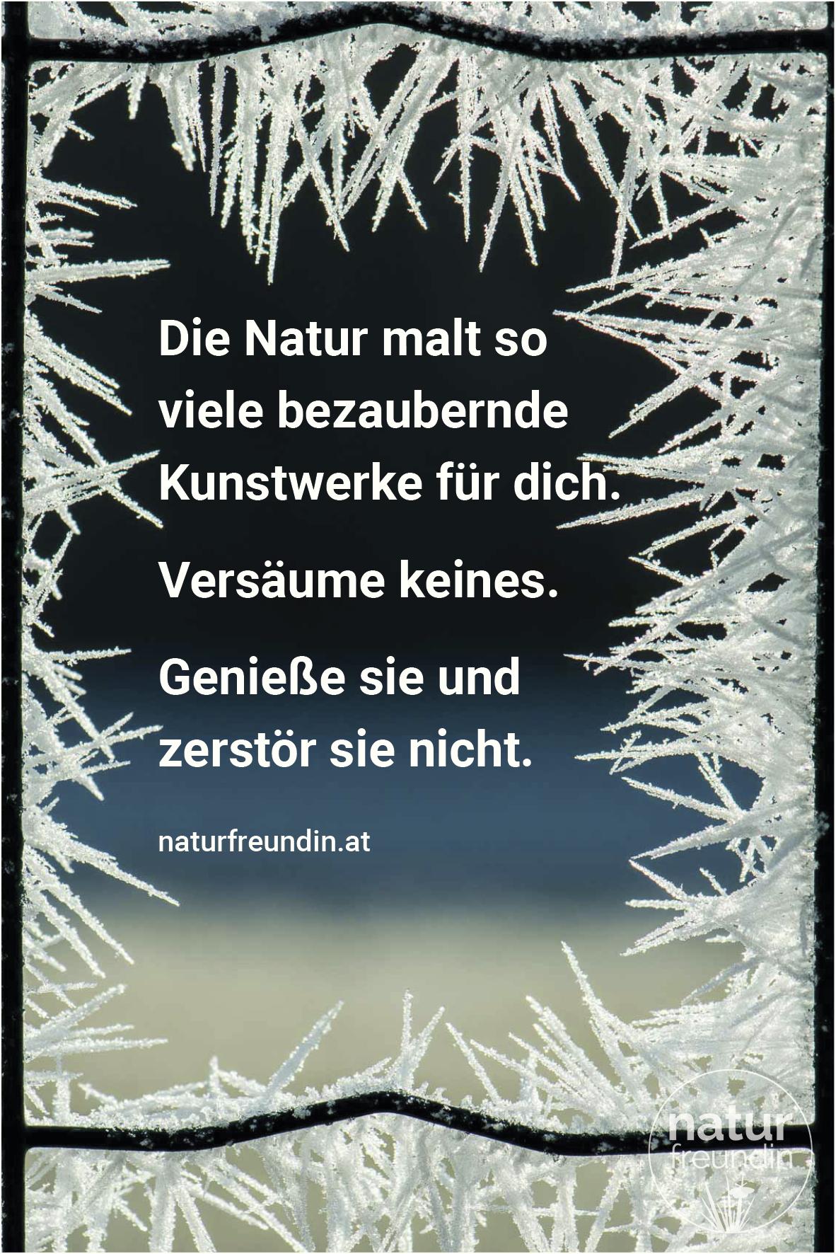 Die Natur malt so viele bezaubernde Kunstwerke für dich. Versäume keines. Genieße sie und zerstör sie nicht.