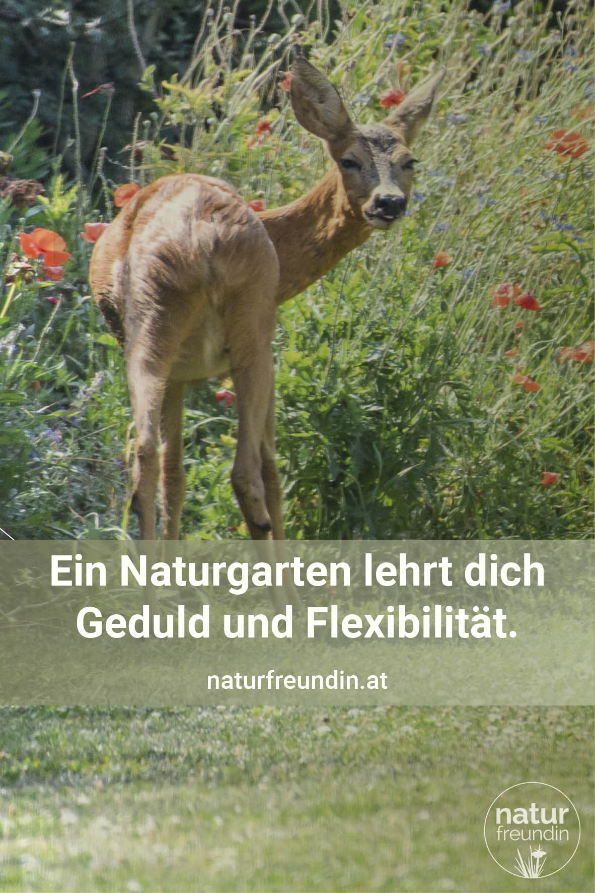 Gartenspruch Naturfreundin