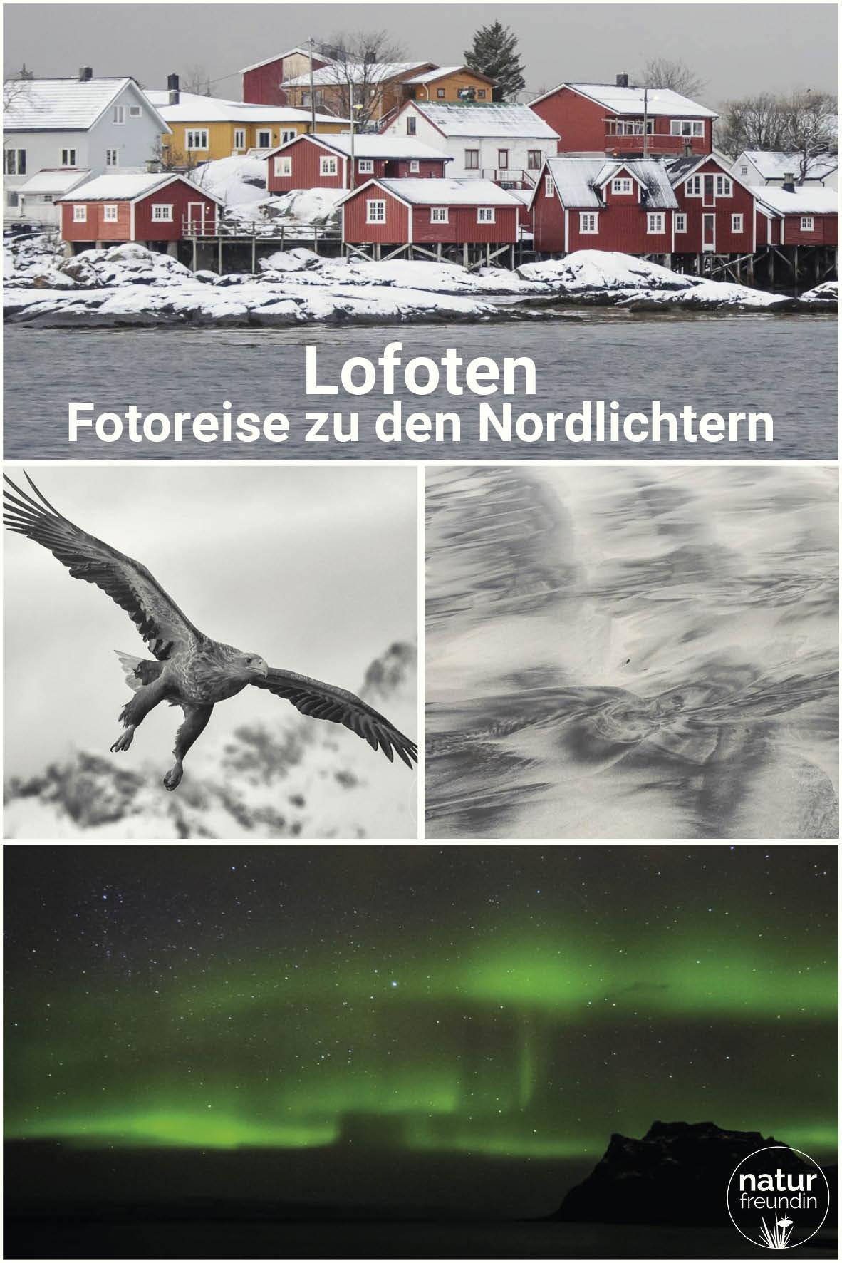 Lofoten - Winterlandschaft und Nordlichter