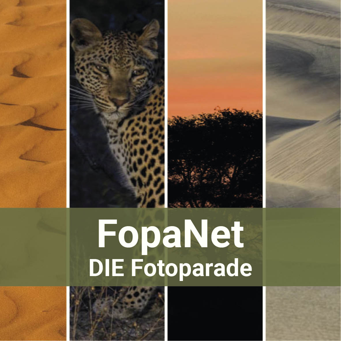 FopaNet - DIE Fotoparade