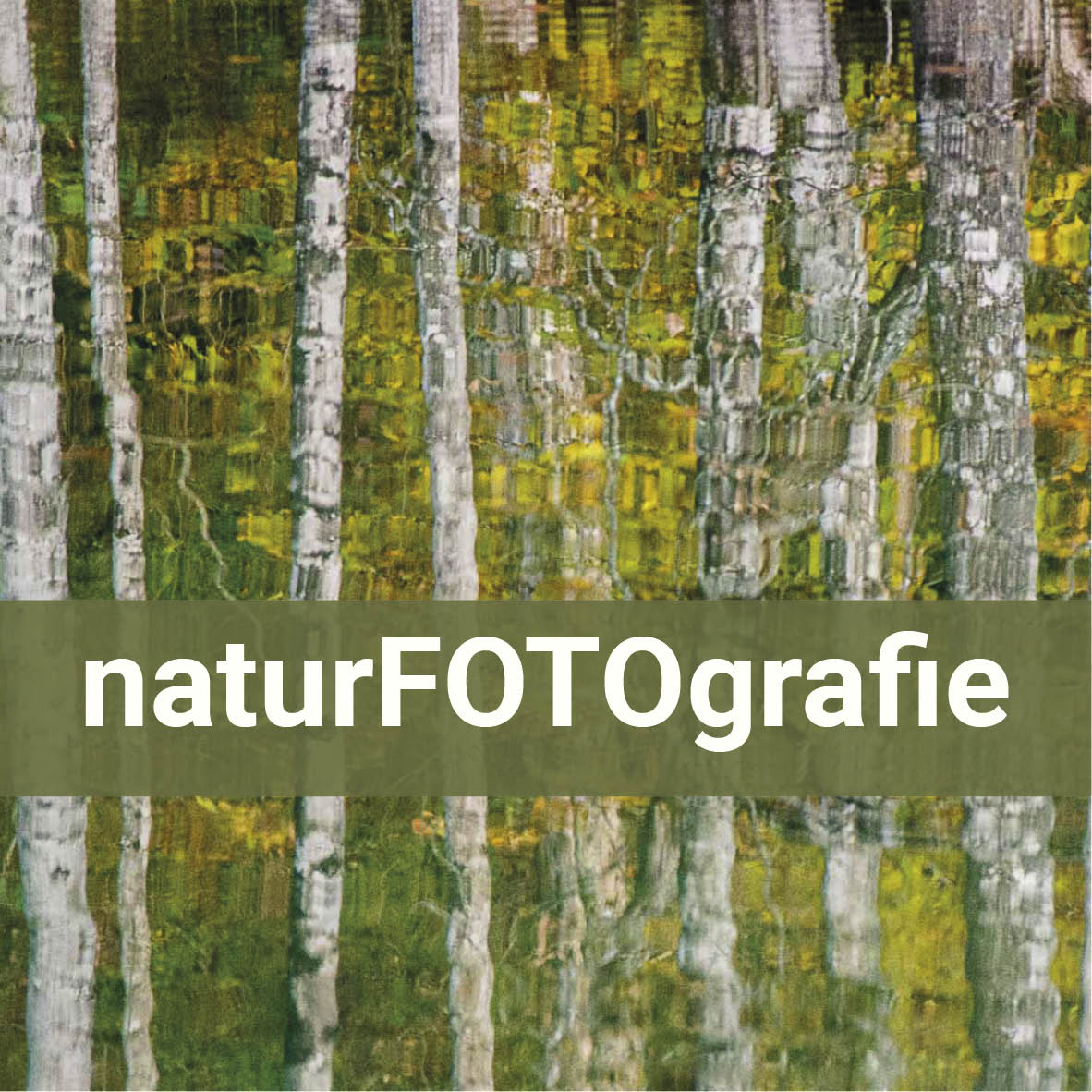 Naturfotos und Tipps für Naturfotografie