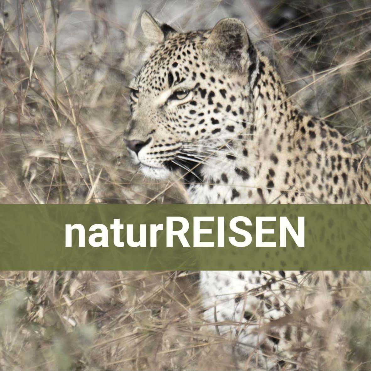 Naturreisen vom Marchfeld bis Südafrika ...