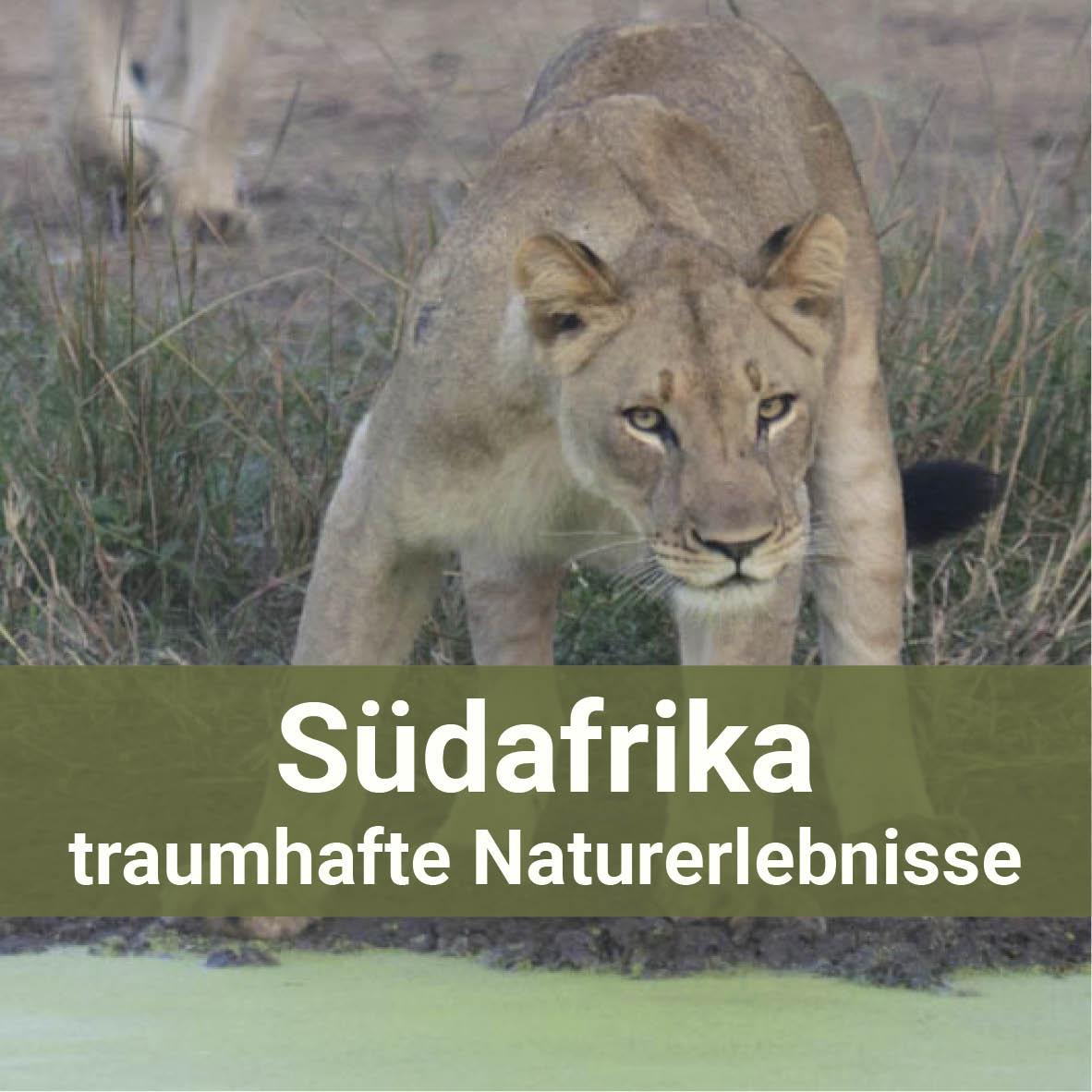 Südafrika - traumhafte Naturerlebnisse