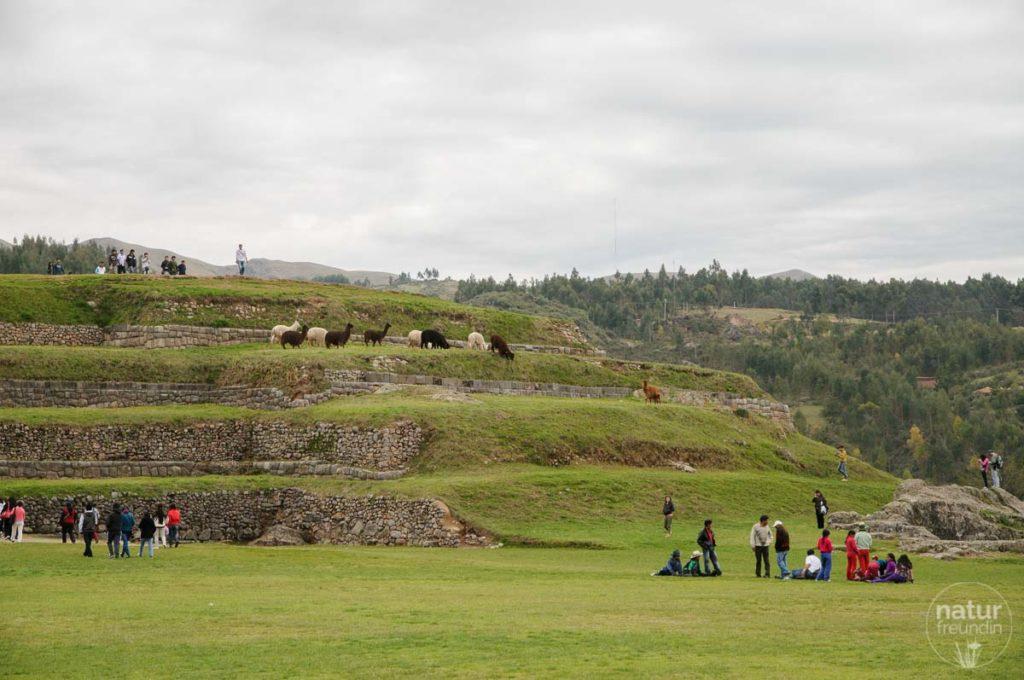 Im Heiligen Tal der Inkas