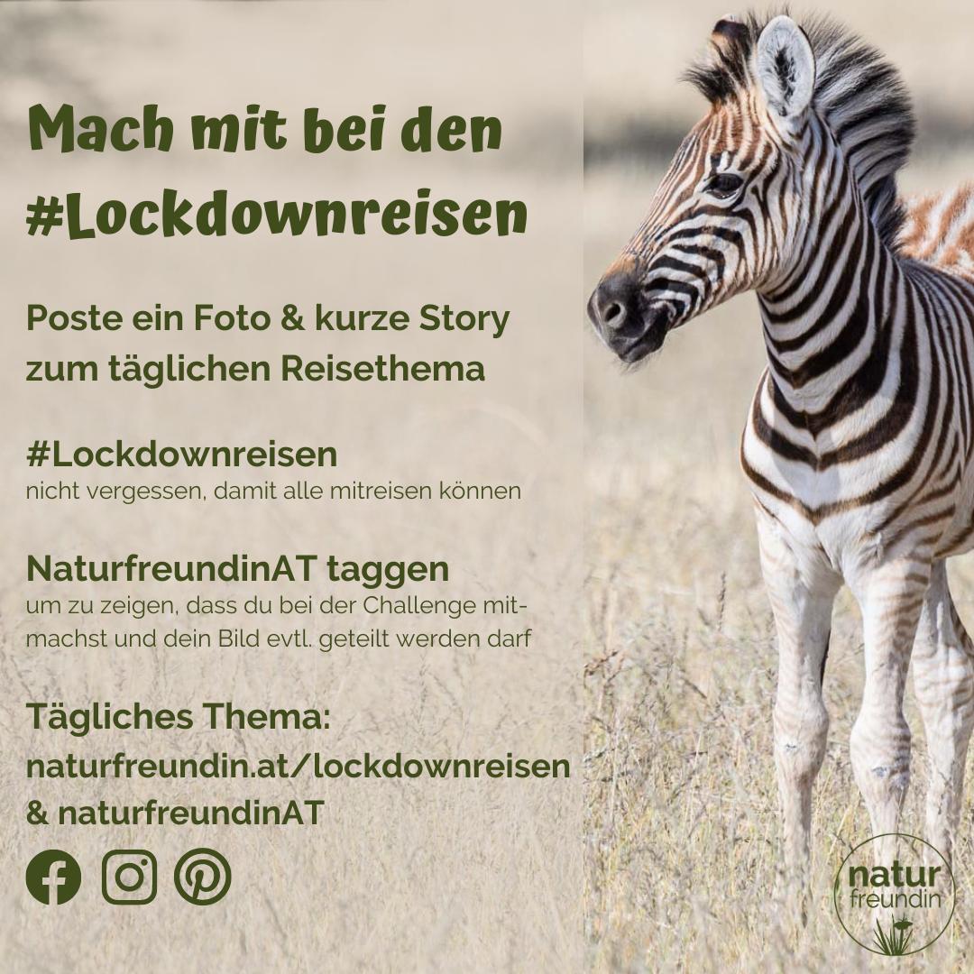 #lockdownreisen - eine Social Media Challenge von naturfreundin.at
