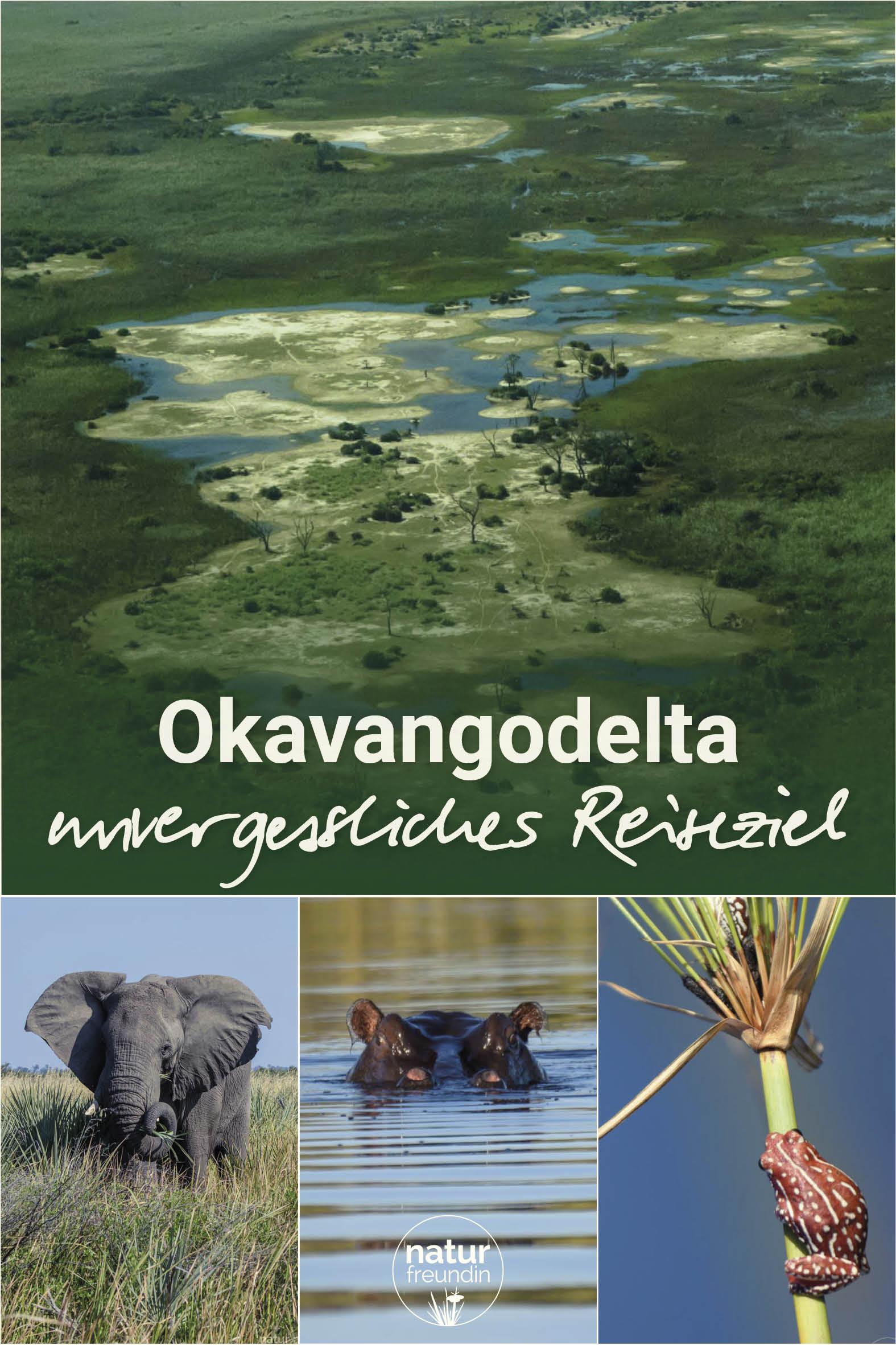 Okavangodelta - ein unglaubliches Reiseziel