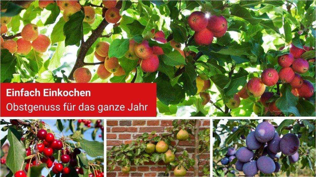 Einkochen - das ganze Jahr frischer Obstgenuss